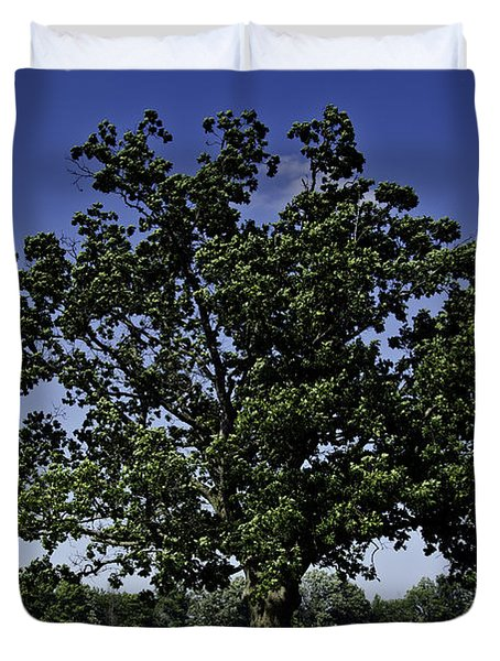 As Above As Below Duvet Cover by LeeAnn McLaneGoetz McLaneGoetzStudioLLCcom