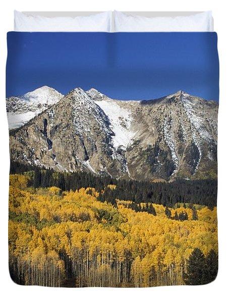 Aspen Trees In Autumn, Rocky Mountains Duvet Cover by David Ponton