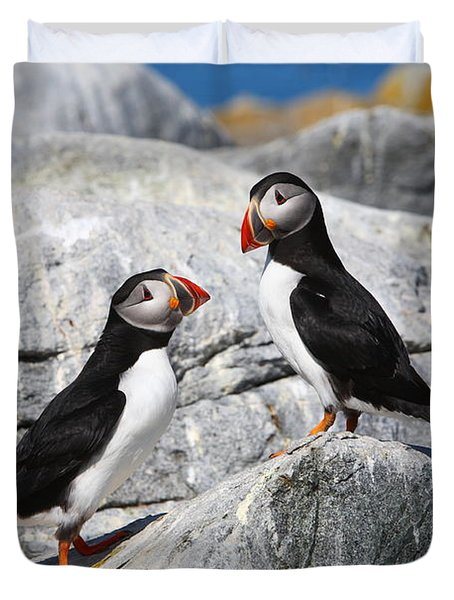Atlantic Puffins Duvet Cover by Bruce J Robinson