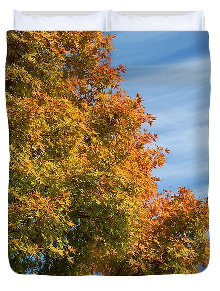 Autumn Anticipation Duvet Cover by Carol Groenen