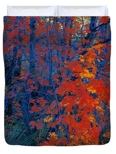 Autumn Foliage Duvet Cover by Don Hammond