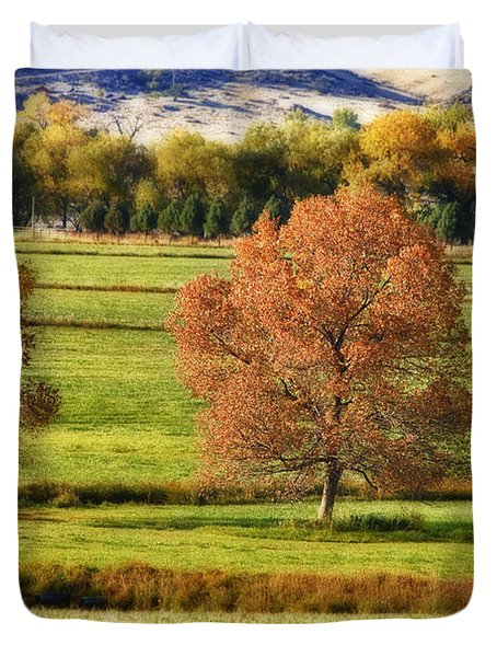 Autumn Landscape Dream Duvet Cover by James BO  Insogna