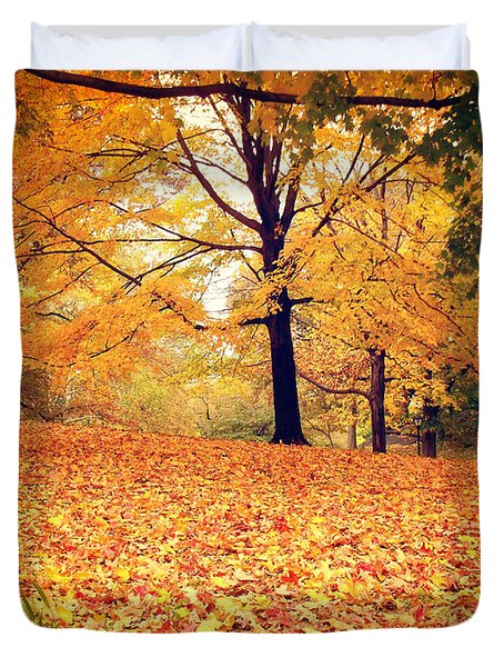 Autumn Leaves - Central Park - New York City Duvet Cover by Vivienne Gucwa