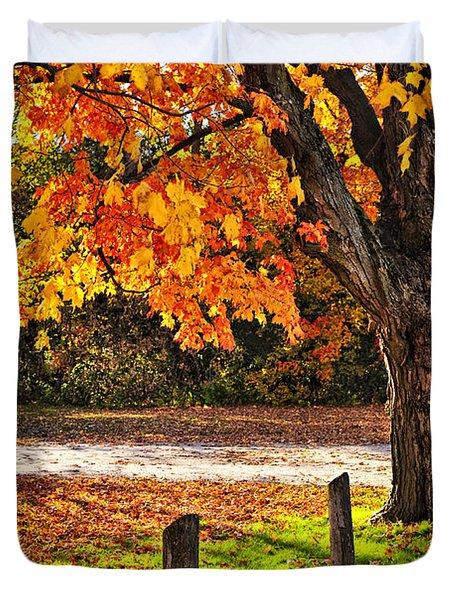 Autumn maple tree near road Duvet Cover by Elena Elisseeva