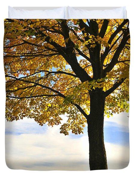 Autumn park Duvet Cover by Elena Elisseeva