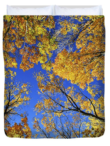 Autumn Treetops Duvet Cover by Elena Elisseeva