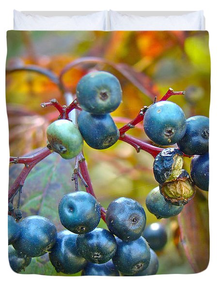 Autumn Viburnum Berries Series #4 Duvet Cover by Mother Nature