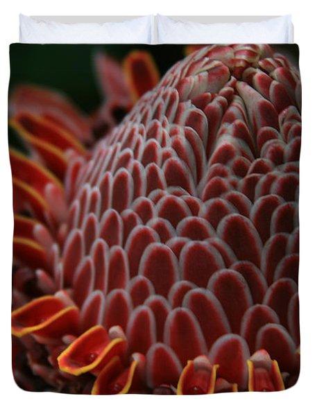Awapuhi Ko Okoo - Torch Ginger - Etlingera Elatior  - Phaeomeria Magnifica - Hoolawa Liilii Hawaii Duvet Cover by Sharon Mau