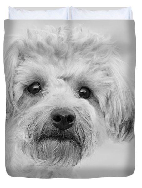 Awesome Abby The Yorkie-poo Duvet Cover by Kathy Clark