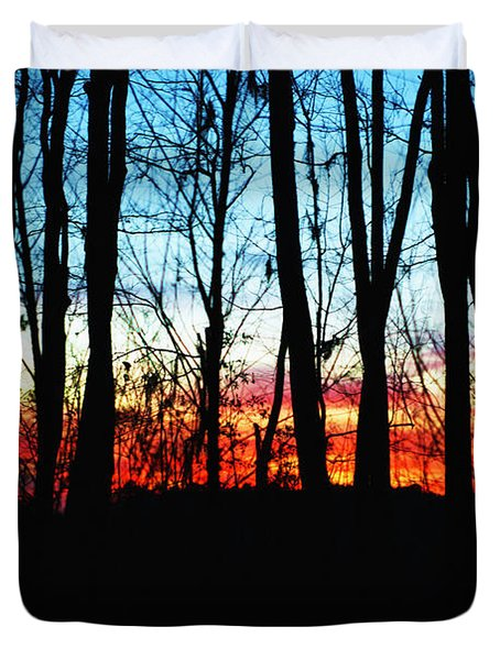 Bare Trees At Sunset 2 Duvet Cover by Skip Nall