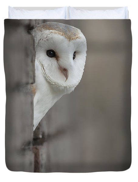 Barn Owl Duvet Cover by Andy Astbury