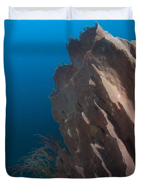 Barrel Sponge And Diver, Papua New Duvet Cover by Steve Jones