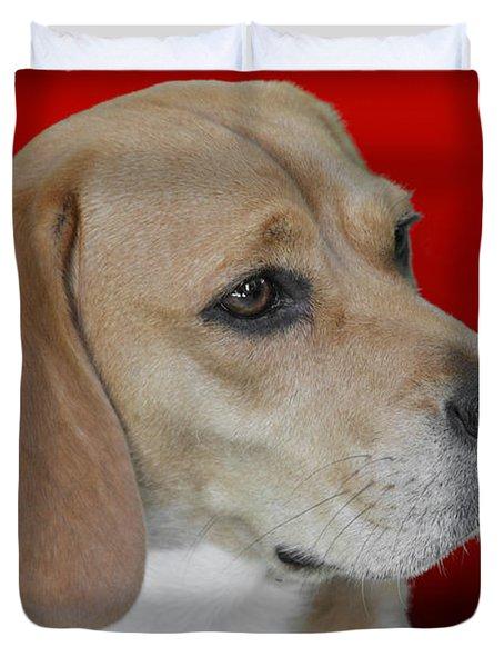 Beagle - A Hound's Hound Duvet Cover by Christine Till