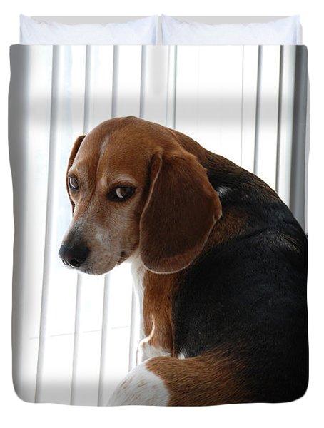 Beagle Attitude Duvet Cover by Jennifer Lyon