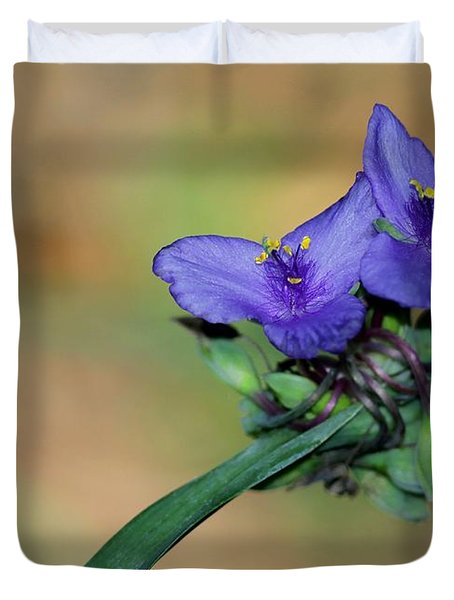 Beautiful Spiderwort Duvet Cover by Sabrina L Ryan