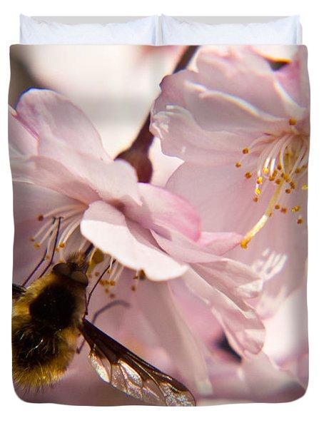 Bee Fly Feeding 6 Duvet Cover by Douglas Barnett