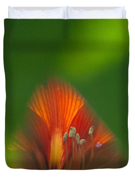 Belladonna Lily Closeup Duvet Cover by Heiko Koehrer-Wagner