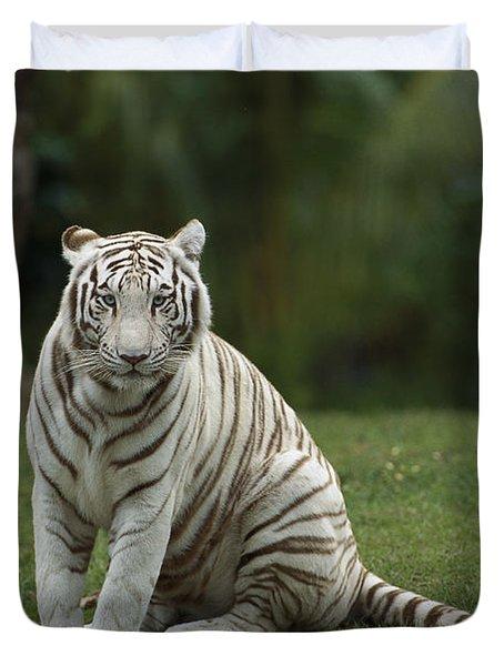 Bengal Tiger Panthera Tigris Tigris Duvet Cover by Konrad Wothe