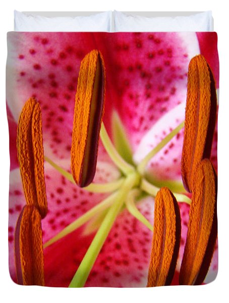 Big Lily Flower Art Prints Pink Lilies Floral Duvet Cover by Baslee Troutman
