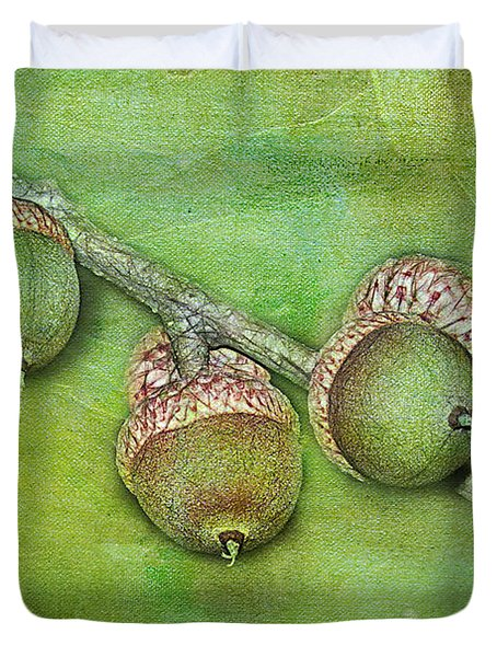 Big Oaks from Little Acorns Grow Duvet Cover by Judi Bagwell