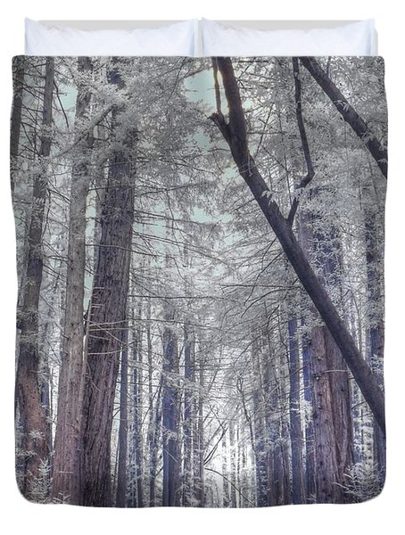 Big Sur State Park Duvet Cover by Jane Linders