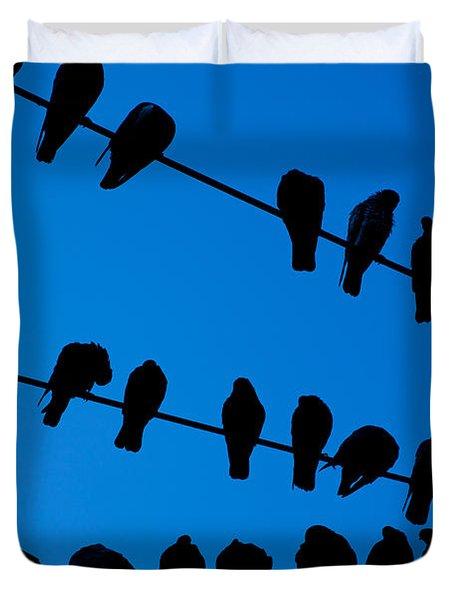 Birds On A Wire Duvet Cover by Karol  Livote