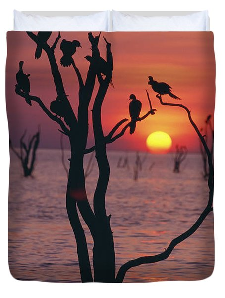 Birds On Tree, Lake Kariba At Sunset Duvet Cover by Axiom Photographic