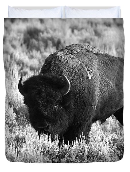 Bison In Black And White Duvet Cover by Sebastian Musial