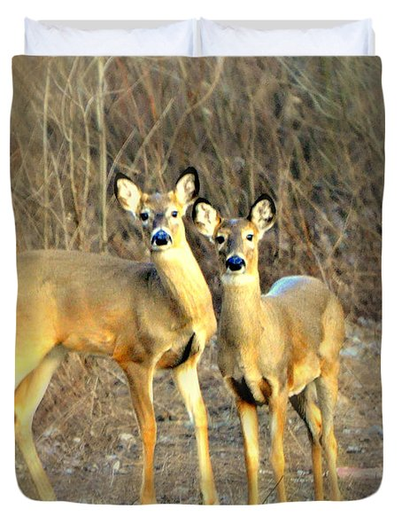 Black Ear Deer Duvet Cover by Marty Koch