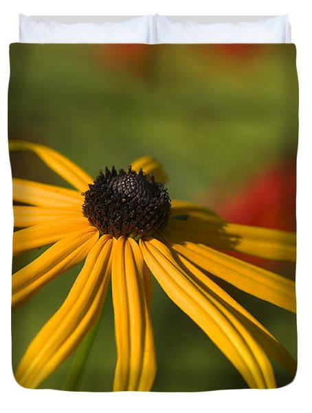 Black-eyed Susan 2 Duvet Cover by Sharon Talson