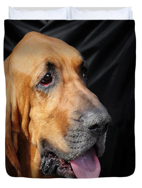 Bloodhound - Governed by a world of scents Duvet Cover by Christine Till