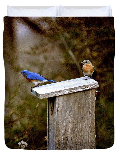 Blue Birds Duvet Cover by Todd Hostetter