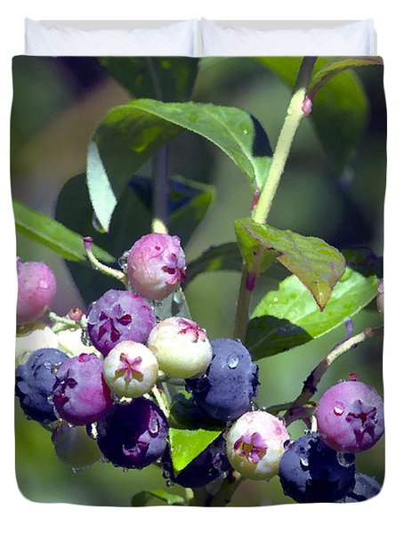 Blueberry Bunch With Raindrops Duvet Cover by Sharon Talson