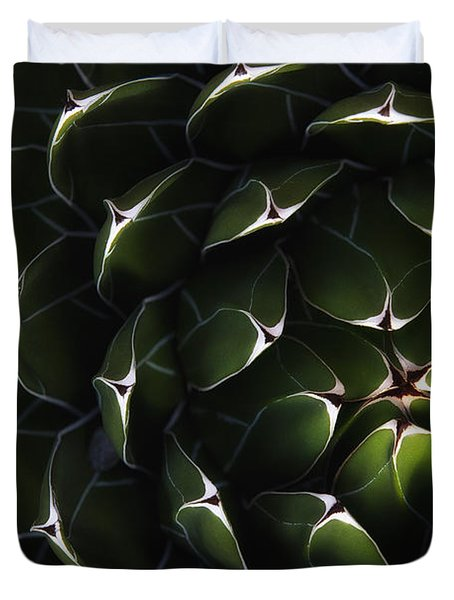 Bolivian Plant In Late Afternoon Light Duvet Cover by Robert Postma