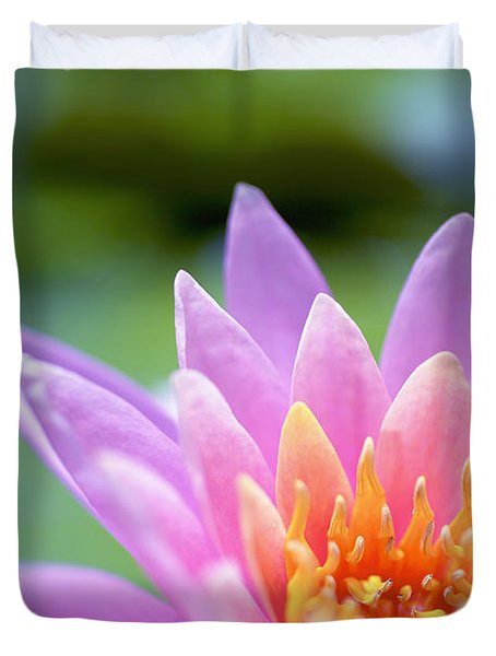 Bright Pink Water Lily II Duvet Cover by Kicka Witte