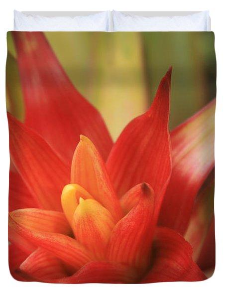 Bromeliad Duvet Cover by Sharon Mau
