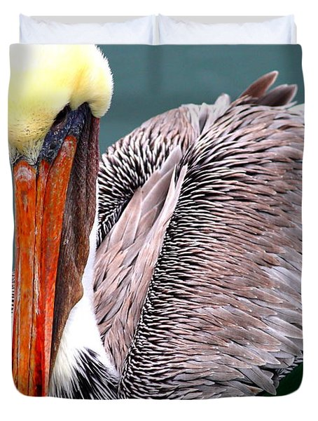 Brown Pelican . 7d8287 Duvet Cover by Wingsdomain Art and Photography