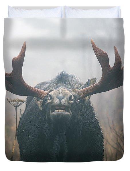 Bull Moose Testing Air For Pheromones Duvet Cover by Philippe Henry