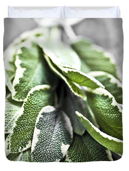 Bunch of fresh sage Duvet Cover by Elena Elisseeva