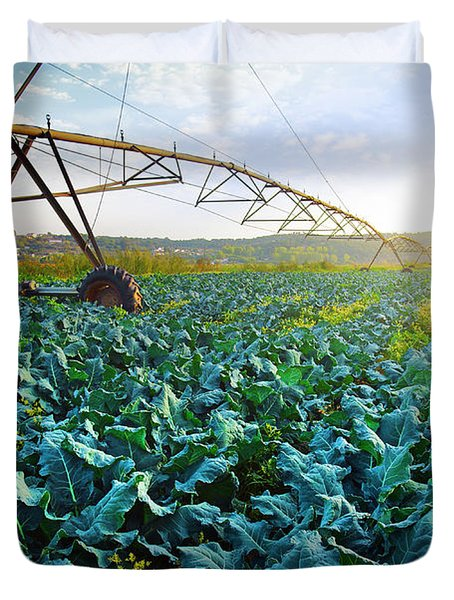 Cabbage Growth Duvet Cover by Carlos Caetano