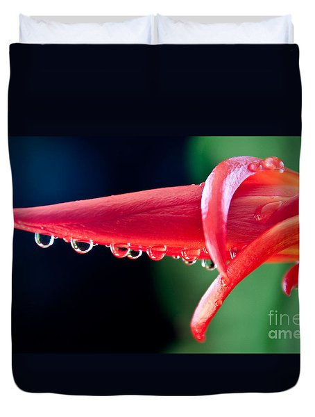 Cactus Orchid Bud Duvet Cover by Dana Kern