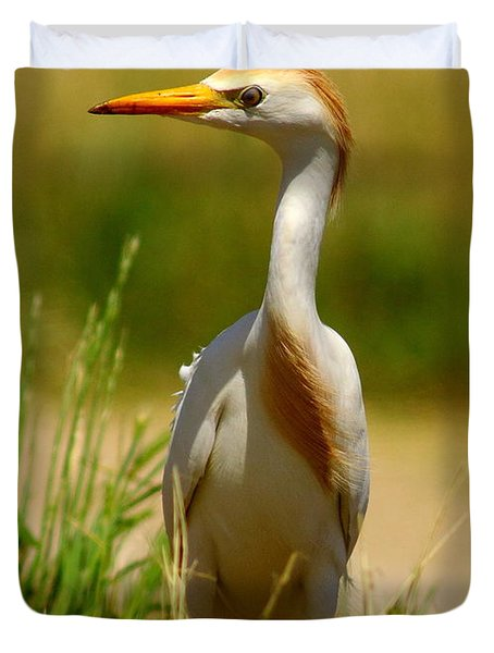 Cattle Egret With Closed Eyelid Duvet Cover by Robert Frederick
