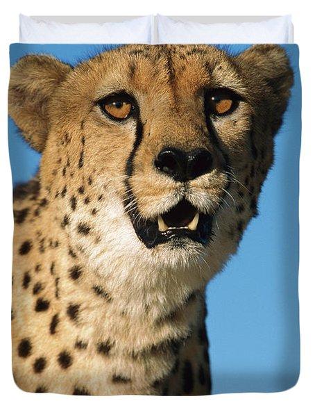 Cheetah Acinonyx Jubatus Portrait Duvet Cover by Ingo Arndt