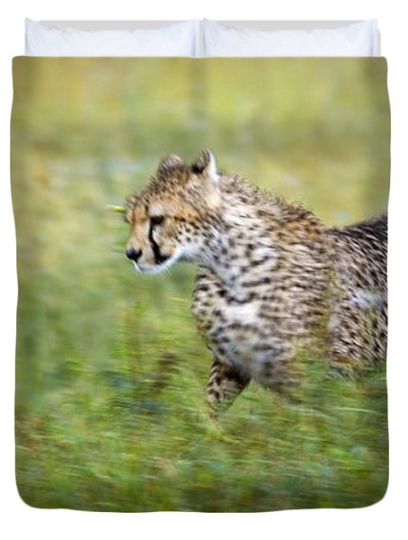 Cheetah Acinonyx Jubatus, Running Duvet Cover by Carson Ganci