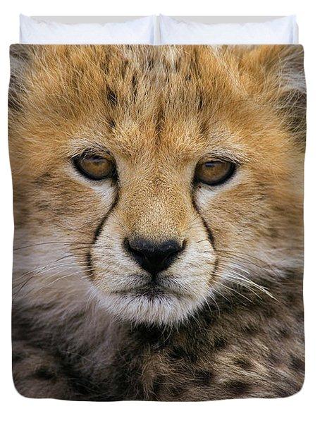 Cheetah Acinonyx Jubatus Ten To Twelve Duvet Cover by Suzi Eszterhas