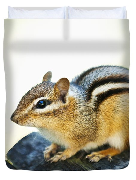 Chipmunk Duvet Cover by Elena Elisseeva