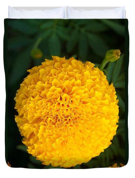 Close-up Marigold Duvet Cover by Atiketta Sangasaeng
