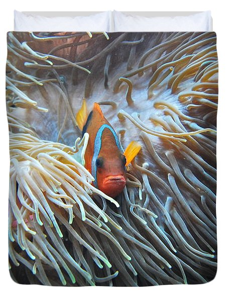Clown Fish Duvet Cover by Michael Peychich
