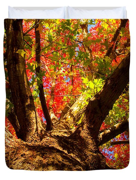 Colorful Autumn Abstract Duvet Cover by James BO  Insogna