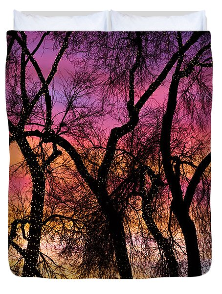 Colorful Silhouetted Trees 27 Duvet Cover by James BO  Insogna